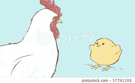 닭과 병아리 57762288