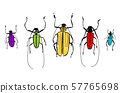 Sketch of funny colorful beetles for your design 57765698