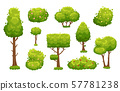 Cartoon trees and bushes. Green plants with flowers for vegetation landscape. Nature forest tree and 57781238