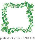 Vine ivy green leaves frame. Climbing plant greenery rectangular border. Floral creeper leaf 57781319