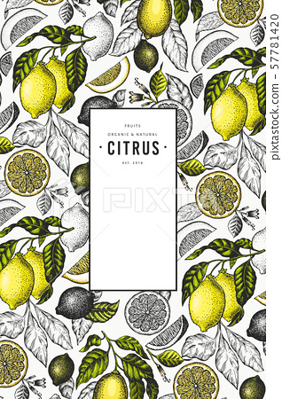 Lemon tree frame template. Hand drawn vector fruit 57781420