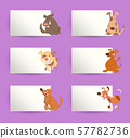 dogs with cards cartoon design elements set 57782736