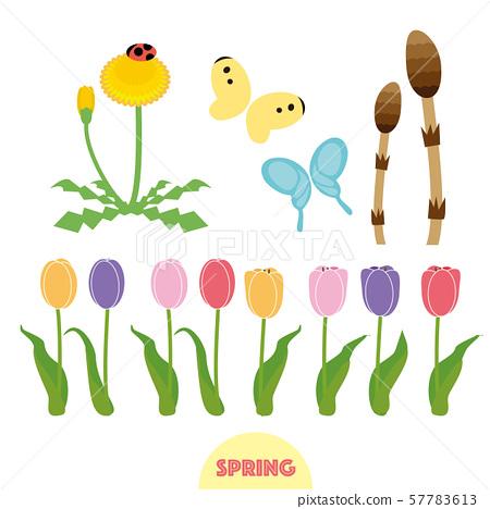 봄의 꽃과 벌레 57783613