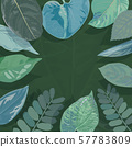 Background of Tropical Leaves. Suitable for nature 57783809