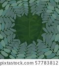 Background of Tropical Leaves. Suitable for nature concept. 57783812