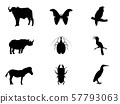 Bird,  insect and wildlife vector illustration 57793063