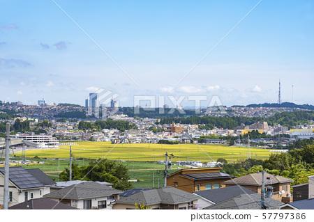 교외에서 바라 보는 거리 풍경 57797386