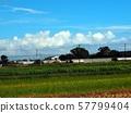 鄉村風光(神戶平原) 57799404