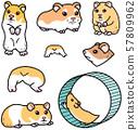 애완 동물 쥐 설치류 햄스터 57809962
