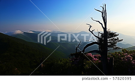 함백산 57820395