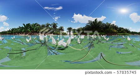 3d illustration spherical 360 degrees, seamless panorama of palm trees near oasis 57835745