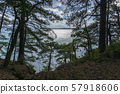 Beautiful view of the Black Sea from top of the hill of the green rain forest. Sun light reflection. 57918606