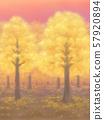 Autumnal trees, golden, sunset, or sunrise 57920894