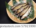 은어 은어 물고기 57923990