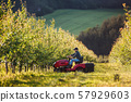 A mature farmer driving mini tractor outdoors in orchard. 57929603