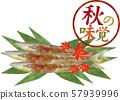 Akito sword fish: Sanma, autumn taste food, watercolor fish, grilled fish, stamp frame, autumn leaves 57939996