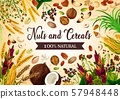 Cereals and nuts, seeds and grains 57948448