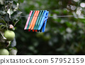 Clothespins on a rope hanging outside house and 57952159