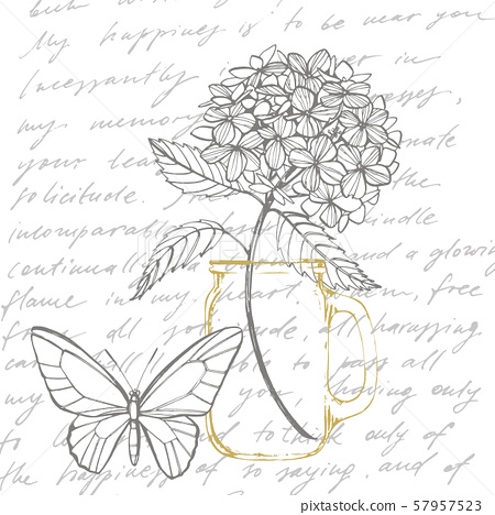 Hydrangea graphic illustration in vintage style. Flowers drawing and sketch with line-art on white 57957523
