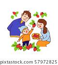 딸기 따기를하는 가족 57972825