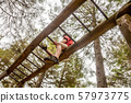 Happy boy having fun climbing on ladder in the forest 57973775