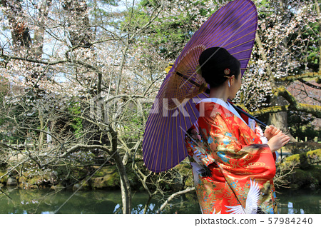 Japanese woman wearing kimono 57984240