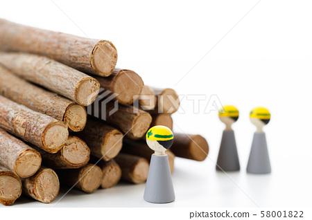 임업 목재 목재 나무 숲 숲 벌채 58001822