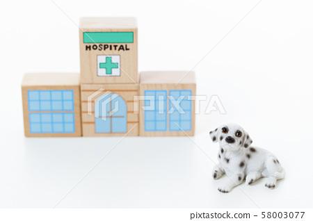 寵物狗 58003077