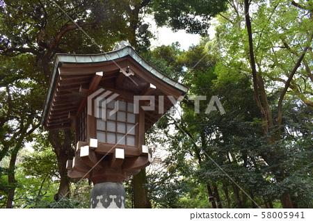Nature of Meiji Shrine 58005941