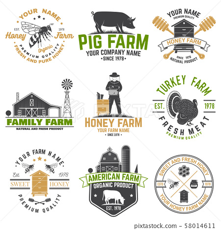 American Farm and Honey bee farm Badge or Label. Vintage typography design with bee, honeycomb piece 58014611