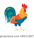 Stylized colorfull rooster icon 58031967