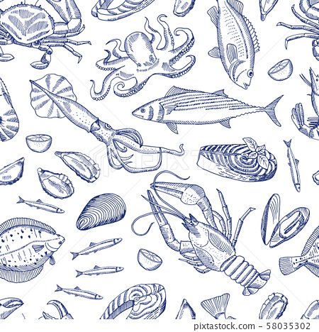 Vector hand drawn contoured seafood elements pattern 58035302