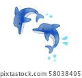 물보라를 일으키며 건너 뛰 두 마리의 돌고래 58038495