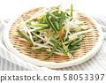 切蔬菜,豆芽和胡蘿蔔 58053397