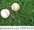 Baseball Ball 58054436