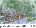 Japan's Autumn Kyoto Ogino Bamboo Forest Road 58056830