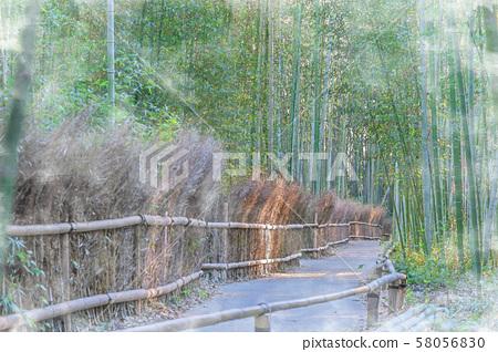 日本的秋天京都荻野竹林道 58056830