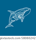Vector illustration of white patterned orca 58060242
