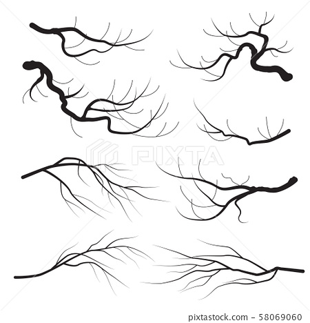 Tree Branches Silhouette Set 58069060