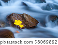 Yellow leaf on a stone in near of a waterfall 58069892