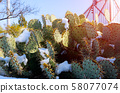 Arizona desert snow storm snow covered prickly 58077074