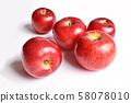 蘋果(茜) 58078010