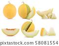 cantaloupe melon isolated on white background 58081554