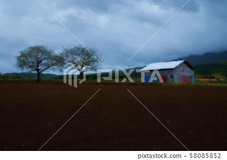 field 58085852