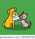 편지를 물고 루 개와 고양이 58088780