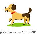 走路的小狗 58088784