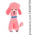 핑크 푸들 58088789