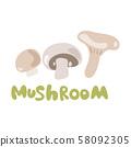 Abstract vector cartoon icon illustration for whole ripe mushroom champignon, slice fungi. Mushroom 58092305