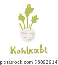 Vector Cartoon Kohlrabi Cabbage. Green kohlrabi, type of cabbage. Fresh organic vegetable. Vector 58092914