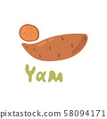 Sweet golden yam kind of potato. Vector illustration isolated on white background. Hand drawn 58094171